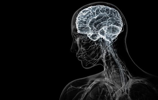 10 самых больших научных обманов, о которых вам могли рассказывать в школе
