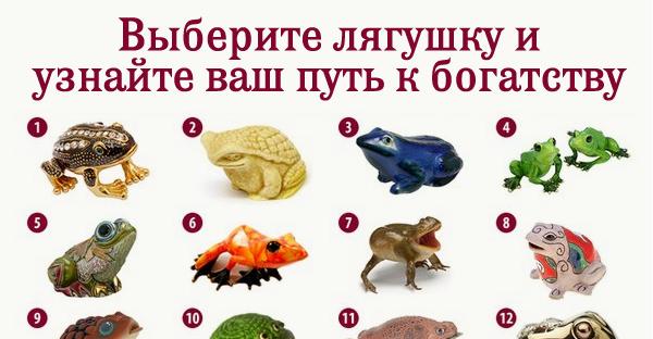 Выберите лягушку и узнайте ваш путь к богатству