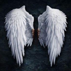 Вячеслав Гусев: Любые проблемы, в том числе и болезни — это просто свернутые крылья