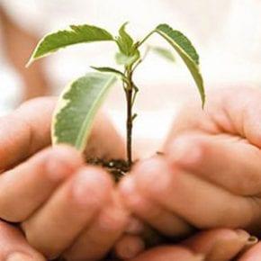 Как при помощи благотворительности исправить денежную карму