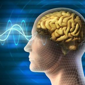 Проверьте работу своего мозга! Тест на внимательность