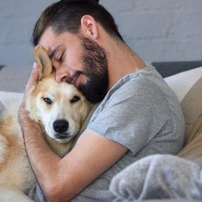 Хотите узнать какой мужчина идеален для вас? В год желтой собаки выбранный пес расскажет все о вашем эталоне!
