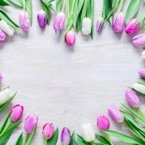 Нумерологический прогноз для рожденных 24-го марта