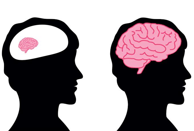 Ученые рассказывают о  5 проверенных способах развития интеллекта