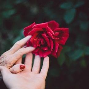 16 крохотных историй о сожалении и раскаянии, способных изменить вашу жизнь