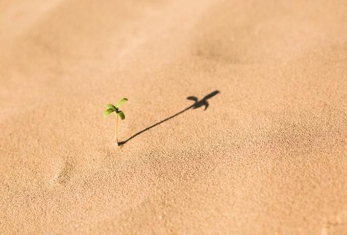 Многие несчастные люди считают, что они нуждаются не в счастье