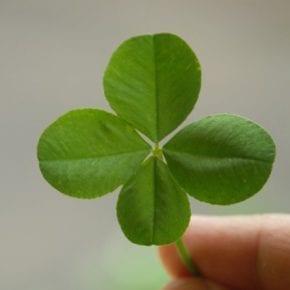 Как быстро привлечь удачу в любой ситуации?