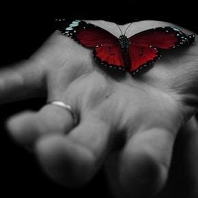Как любить легко и без привязанности