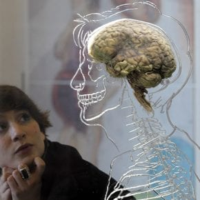 10 самых разрушительных привычек нашего мозга