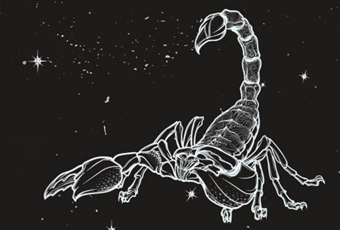 15 горьких истин о Скорпионах: грубо, но честно