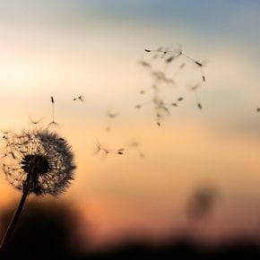 10 цитат, которые напомнят вам: любой конец — это новое начало