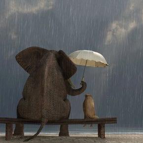 Ученые считают, что доброта способна сделать вас хорошим лидером