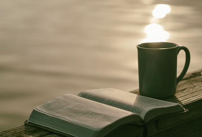 Почему чтение книг должно стать вашим приоритетом — согласно науке