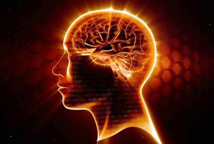 Чего мы могли бы добиться, если бы использовали наш мозг на все 100%