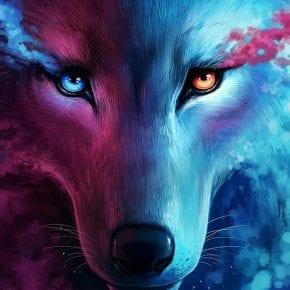 Если вы обладаете большей частью из этих 12 качеств, вы - настоящий волк среди овец