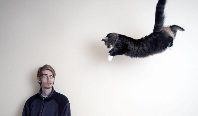 Страх перед животными может многое рассказать о вашем характере