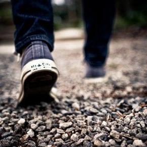 Стив Джобс знал о пользе ежедневных прогулок, а вы?