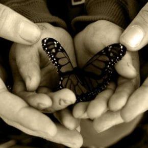 Подлинная доброта – это универсальный язык